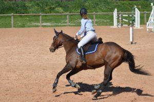 Entrainement équitation en manège