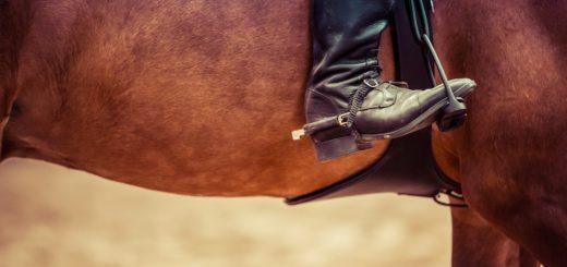 Bottes équitation : conseils utiles pour les choisir